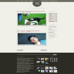 40 High Quality CSS and XHTML Web Layout Templates