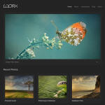 wordpress_portfolio_1